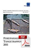 Fiskepassage